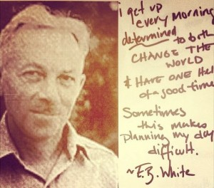 E.B.-White-Quote-300x264 hell of a time